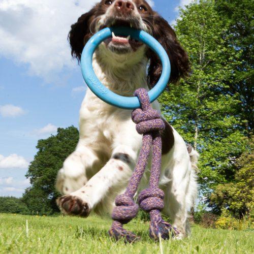 Hoop on rope med igro