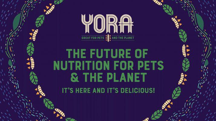 PRIPOROČAMO OGLED: Sustainable pet food